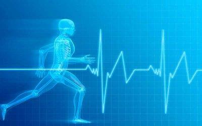 Frecuencia Cardíaca: midiendo la intensidad de tus entrenamientos