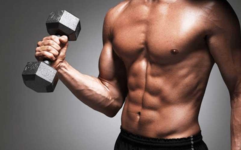 Hipertrofia muscular: ¿porqué crecen tus músculos con la fuerza?