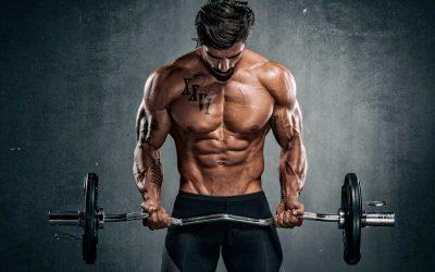 Principio de sobrecarga: el secreto de la hipertrofia muscular