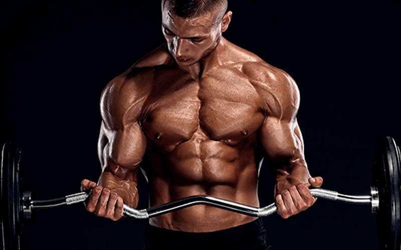 Entrenar a diario ¿es efectivo para lograr hipertrofia muscular?