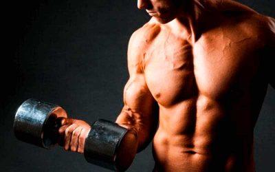 Quemar grasa: el secreto del entrenamiento de fuerza para lograrlo