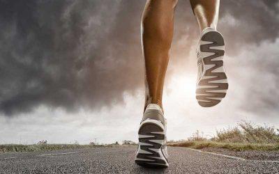 Restitución energética: las vías metabólicas que usa el organismo