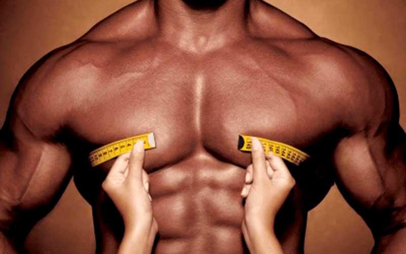 Músculo esquelético: su relación con la sensibilidad insulínica